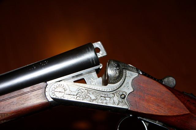 střelná zbraň.jpg